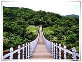 白石湖吊橋_賞百合花:IMG_2115.JPG