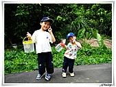 湖山國小登山步道:IMG_2328.JPG