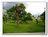 中和-八二三紀念公園(20090704):IMG_9685.jpg