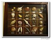 寶貝的家貝殼會館:IMG_1875.jpg