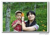 太麻里200608:100_4184.jpg