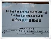 白石湖吊橋_賞百合花:IMG_2153.JPG