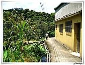 湖山國小登山步道:IMG_2347.JPG