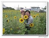 嘉義新港200702:IMG_0390.jpg