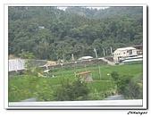 桃米生態村(20090523):IMG_7333.jpg
