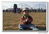 台南燈會200602:100_1745.jpg