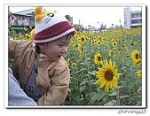 嘉義新港200702:IMG_0396.jpg