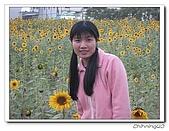 嘉義新港200702:IMG_0397.jpg