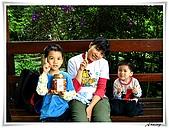 土城桐花公園:IMG_1061.JPG