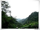 土城桐花公園:IMG_1049.JPG