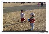台南燈會200602:100_1750.jpg