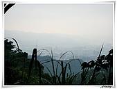 土城桐花公園:IMG_1056.JPG