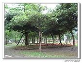 武荖坑綠色博覽會200705:IMG_0274.jpg