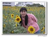 嘉義新港200702:IMG_0406.jpg