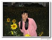 嘉義新港200702:IMG_0408.jpg