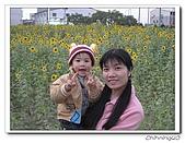 嘉義新港200702:IMG_0412.jpg