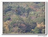 泰安鄉騰龍山莊200312:PC200020.jpg