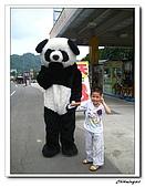 桃米生態村(20090523):IMG_7355.jpg