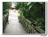 植物園(20090207):IMG_3484_nEO_IMG.jpg