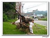 桃米生態村(20090523):IMG_7362.jpg