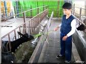 宜農牧場:IMG_1017.JPG