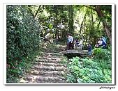 大溪十一指古道(20090502):IMG_6346_nEO_IMG.jpg