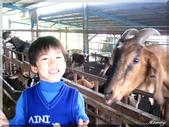 宜農牧場:IMG_1024.JPG