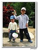 芎林鄉鹿寮坑油桐花步道(20090503):IMG_6555.jpg
