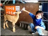 宜農牧場:IMG_1094.JPG