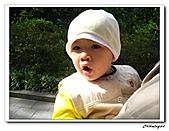 植物園(20090207):IMG_3496_nEO_IMG.jpg