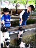 宜農牧場:IMG_1065.JPG