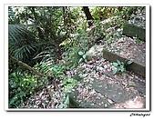 大溪十一指古道(20090502):IMG_6370_nEO_IMG.jpg