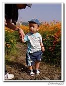 大溪台四線花海200511:PB110042.jpg