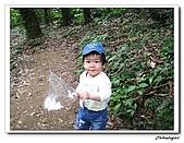 芎林鄉鹿寮坑油桐花步道(20090503):IMG_6579.jpg