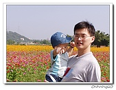 大溪台四線花海200511:PB110052.jpg