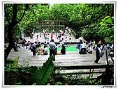 土城桐花公園:IMG_1107.JPG