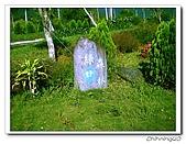 綠野森林民宿:IMG_3279.jpg