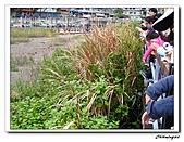 關渡宮(20090328):IMG_5934_nEO_IMG.jpg