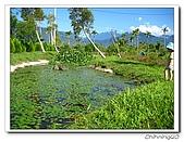 綠野森林民宿:IMG_3289.jpg