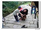承天寺爬山(20090510):IMG_6983.jpg