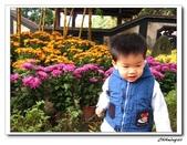 林家花園(20090129):IMG_3367_nEO_IMG.jpg