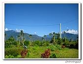 綠野森林民宿:IMG_3293.jpg