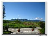 綠野森林民宿:IMG_3294.jpg