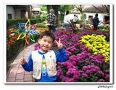 林家花園(20090129):IMG_3377_nEO_IMG.jpg