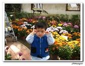 林家花園(20090129):IMG_3379_nEO_IMG.jpg