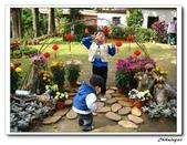 林家花園(20090129):IMG_3381_nEO_IMG.jpg