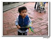 林家花園(20090129):IMG_3391_nEO_IMG.jpg