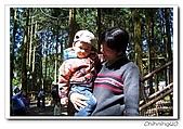 馬武督探索森林_綠光小學200603:100_2151.jpg