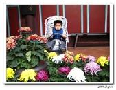 林家花園(20090129):IMG_3400_nEO_IMG.jpg