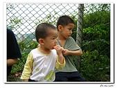 承天寺爬山(20090510):IMG_7001.jpg